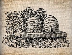 skep hive